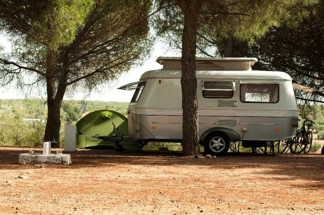 Roulotte de camping sous un arbre